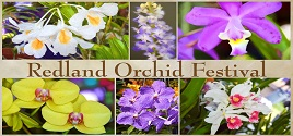 REDLAND ORCHID FEST